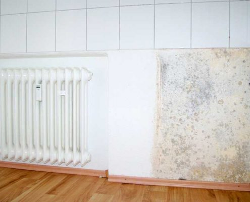 how to stop damp in bedroom, damp proofing paint for interior walls, damp under house, how to damp proof, paint to stop damp on walls, best paint for damp walls, damp proof paint for internal walls, damp treatment companies, diagnosing damp problems, water patches on wall, damp wall covering, lakhwa chemical services