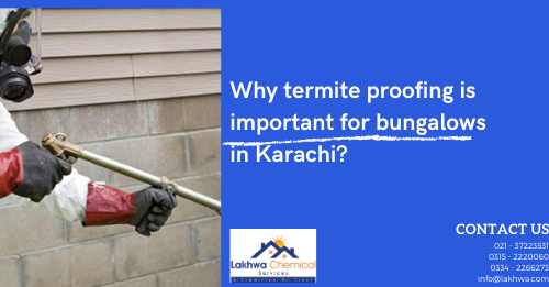 termite proofing | termite proofing meaning in urdu | termite proofing in karachi | termite proofing materials names | termite control chemicals in pakistan | lcs waterproofing solutions | lakhwa chemical services